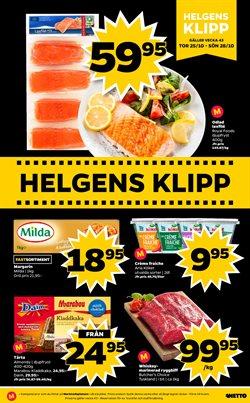 Matbutiker erbjudanden i Netto katalogen i Göteborg