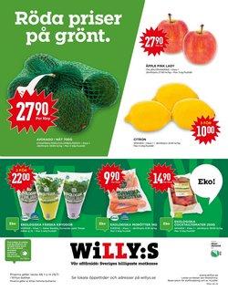 Willys-katalog i Trelleborg ( Går ut imorgon )