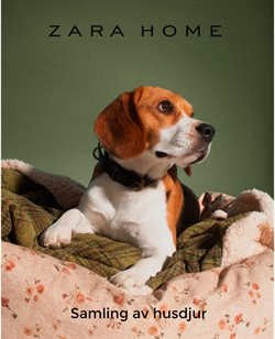 ZARA HOME-katalog ( 6 dagar kvar )