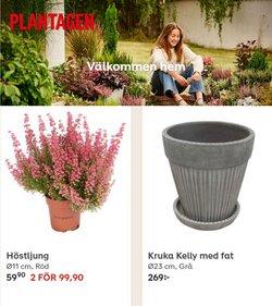 Plantagen-katalog ( Går ut idag)