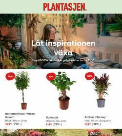 Plantagen-katalog ( 12 dagar kvar)
