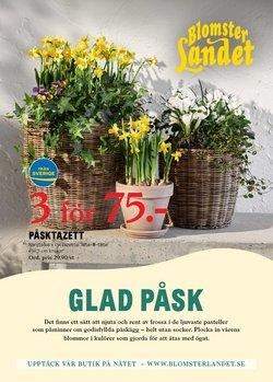 Blomsterlandet-katalog ( Har gått ut )