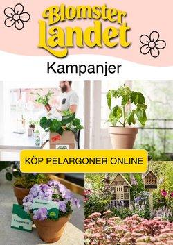 Erbjudanden från Blomsterlandet i Blomsterlandet ( Publicerades idag)