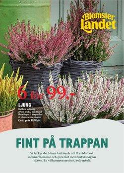 Erbjudanden från Bygg och Trädgård i Blomsterlandet ( Publicerades idag)