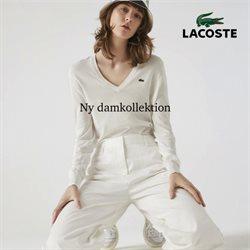 Lacoste-katalog ( 8 dagar kvar )