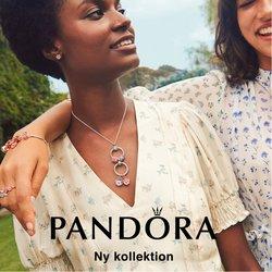 Pandora-katalog ( Publicerades igår )