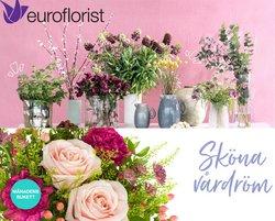 Euroflorist-katalog ( 2 dagar kvar )