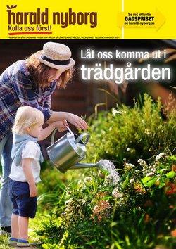 Erbjudanden från Harald Nyborg i Harald Nyborg ( Mer än en månad)
