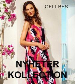 Cellbes-katalog ( Mer än en månad)