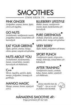 Blueberry Lifestyle-katalog ( Har gått ut )