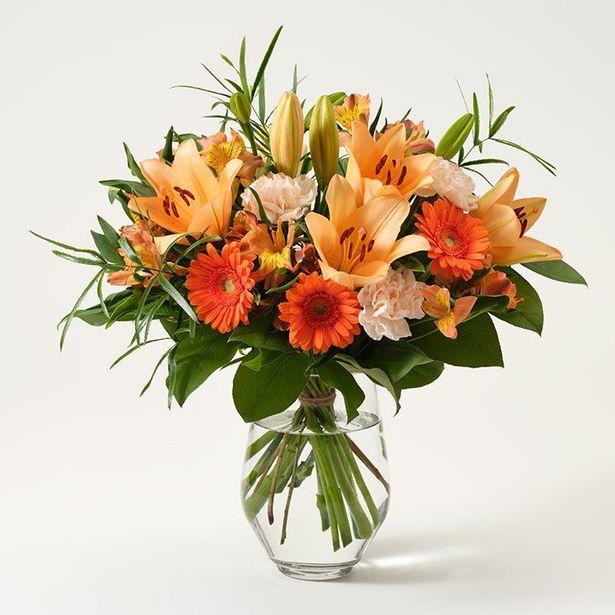 Mera Blomsterglädje för 365 kr