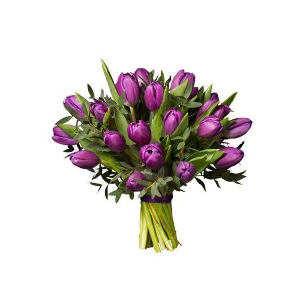 Lila tulpaner för 345 kr
