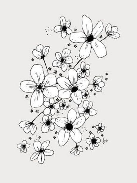 Lilou Lilou Poster Anemone 30x40, Vit för 9 kr