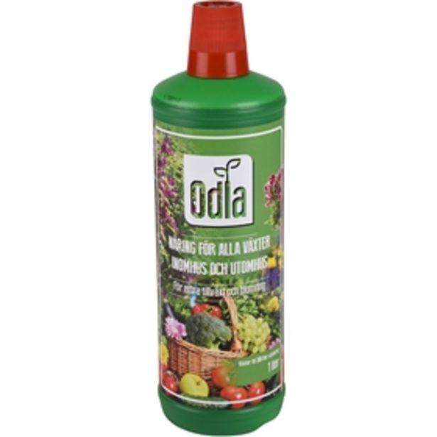 Växtnäring Odla för 29 kr