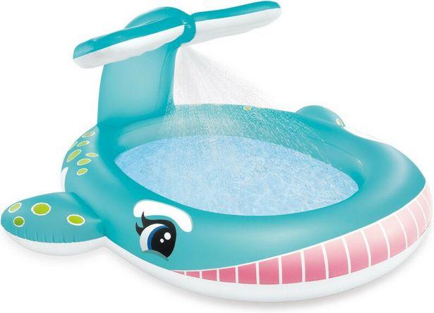 INTEX Whale Spray Pool för 249 kr